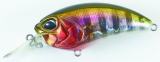 Duo Realis M62 5A Prism Gill